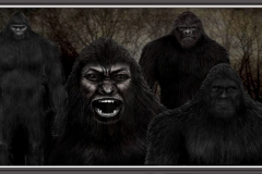 Squatch Group photo