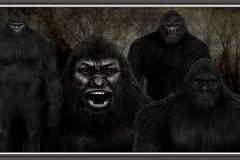 Squatch Group photo
